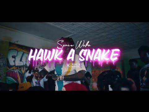 """NEW MUSIC ALERT! """"HAWK A SNAKE"""" BY SAUCE WALKA"""