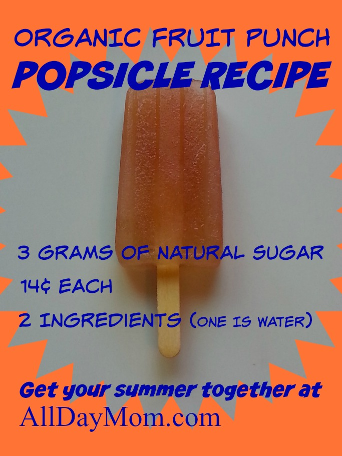 Make this cheap and easy organic fruit punch popsicle recipe all summer long