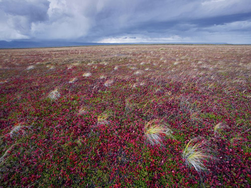National Geographic - Photo of the Day. Архив за сентябрь 2010