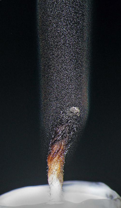 Радуга затухающих свеч. Фотонаблюдения by Grover Schrayer