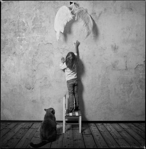 Девочка и кот. Серия фотографий Андрея Прохорова