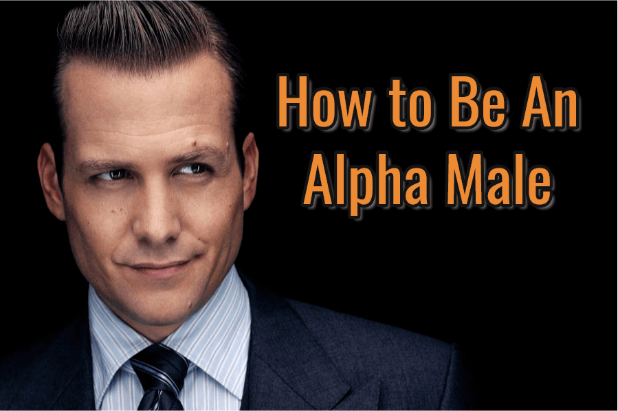 alpha male characteristics in relationships