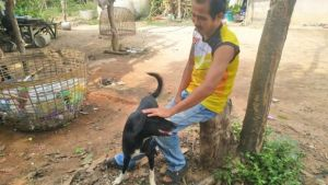 The dog who saved an abandoned baby enjoying the adoration of his owner