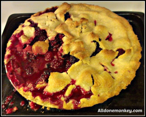 Homemade Blackberry Pie {Backyard Barbecue Blog Hop} - Alldonemonkey.com