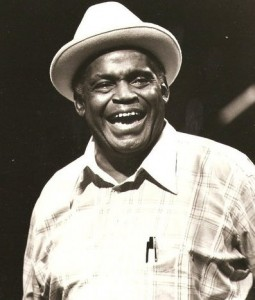 Willie dixon bassology
