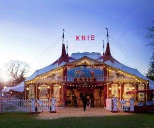 Eintritte für den Circus Knie gewinnen
