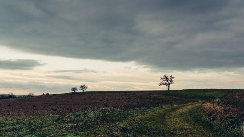 Kraichgau, Landschaft, Winter, Jahreszeiten