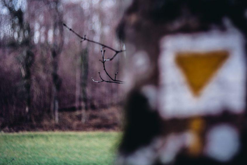 Signs, Zeichen, Achtsamkeit, Neugier, Glück