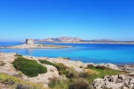 Sardinie foto's Stintino