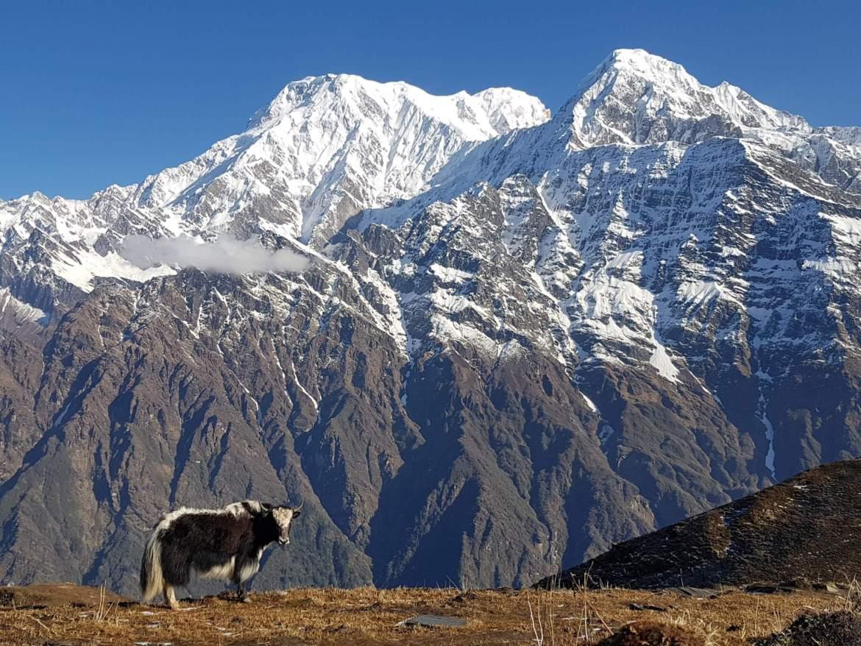 Backpacken in Nepal