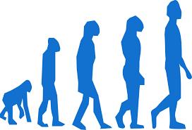 régime paléo évolution