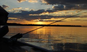 Fishing trips in Corfu