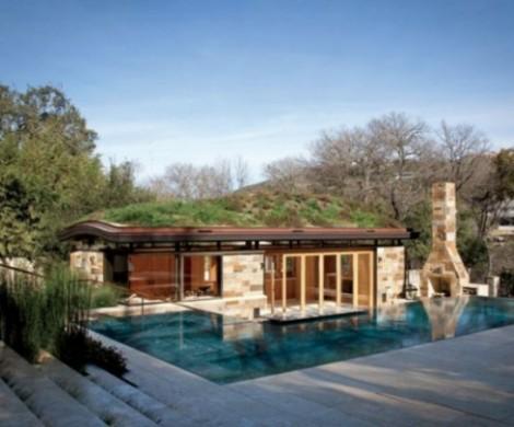 Tolles Natur Dach Design eine echte DachOase fr Ihr Haus
