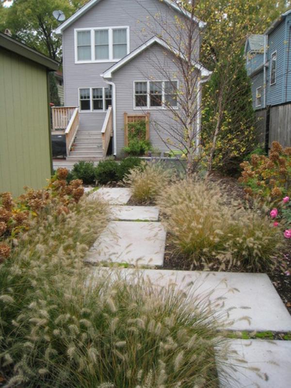 Eine tolle Pflanze fr Ihren Garten das Lampenputzergras