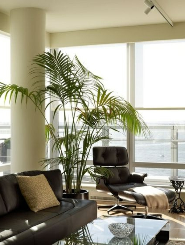 Stunning Dekorative Pflanzen Fürs Wohnzimmer Images - Milbank ...