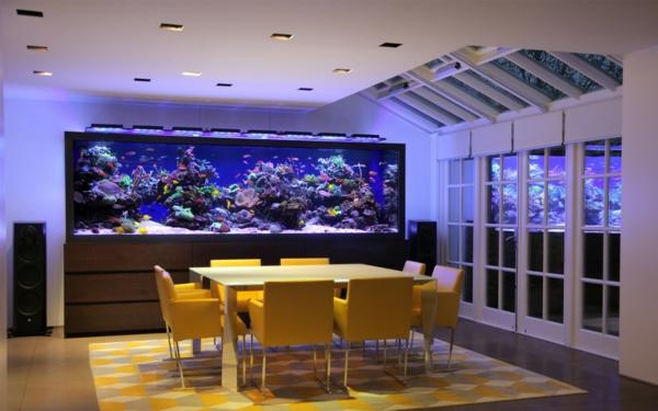 3d Moving Fireplace Wallpaper Aquarium Fische Einen Exotischen Und Beruhigenden Akzent