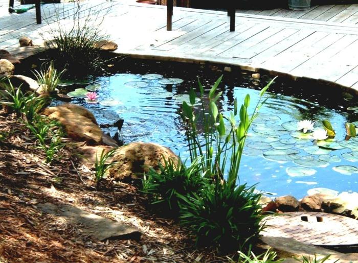 Gartenteiche bereichern Ihren Garten mit einer magischen Wirkung