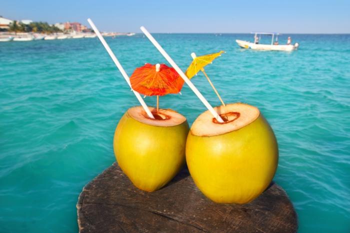 Kokosnuss gesund  die Wirkung des Kokosnusswassers auf unseren Krper