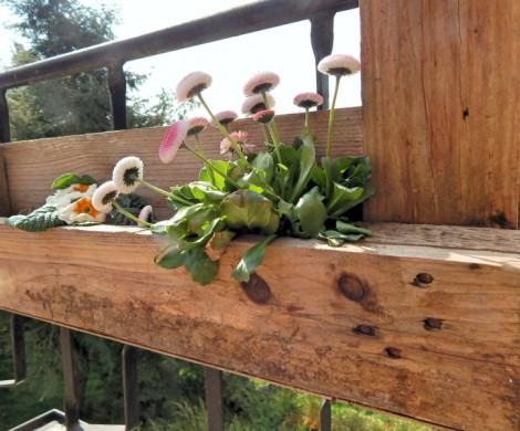 DIY Europaletten Blumenkasten So bauen Sie einen dekorativen Blumenkasten
