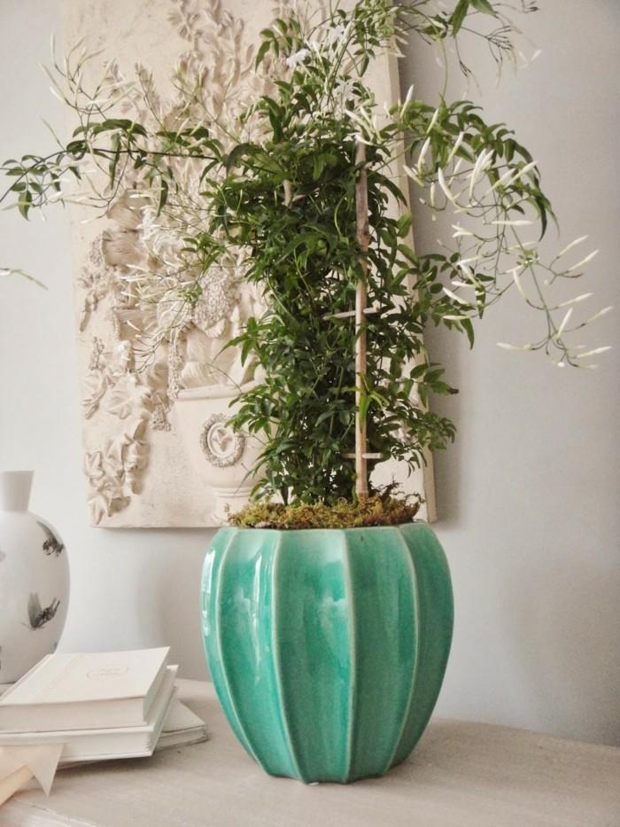 12 Zimmerpflanzen fr positive Energie zu Hause