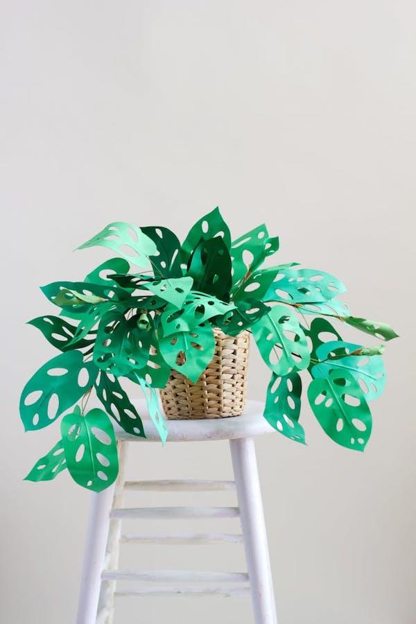Deko und Geschenkidee DIY Papierpflanzen fr Kinder und