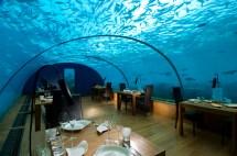 Die Malediven Bieten Ein Neues Reiseerlebnis - Unterwasser