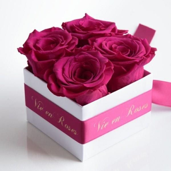 Rosen konservieren und eine Blume fast fr die Ewigkeit haben