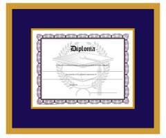 Diploma Design 3
