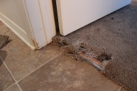 Allens Carpet Repair Services And Carpet Stretching