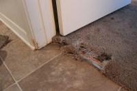 Allens Carpet Repair Services And Carpet Stretching ...