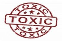 The Importance of Environment: From Toxic to Healing