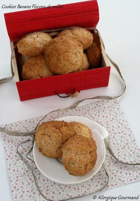 cookies banane flocons millet sans gluten sans oeufs