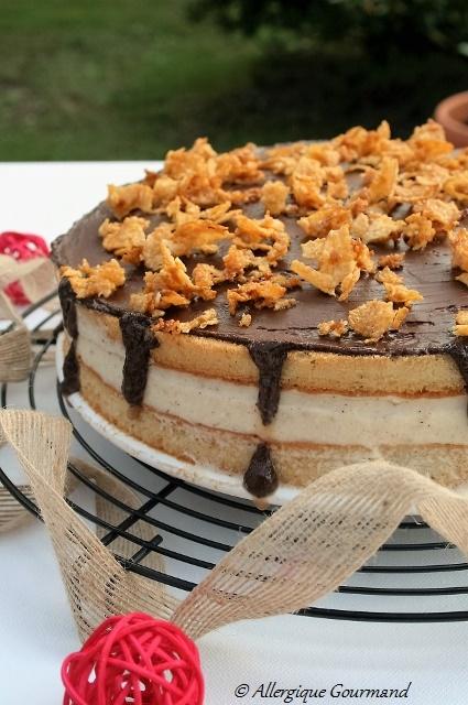 gâteau à la mousse de spéculoos sans gluten sans oeufs