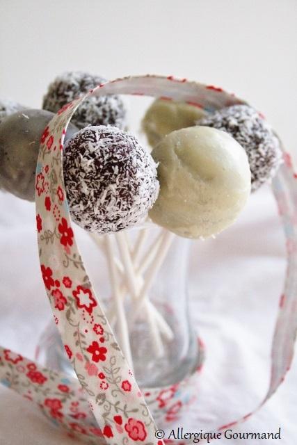 Sucettes de canneberges coco ou chocolat blanc