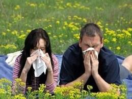 Проявления аллергии