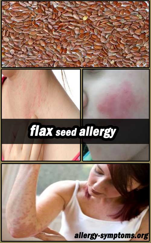 flax seed allergy