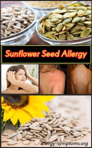 sunflower-seed-allergy