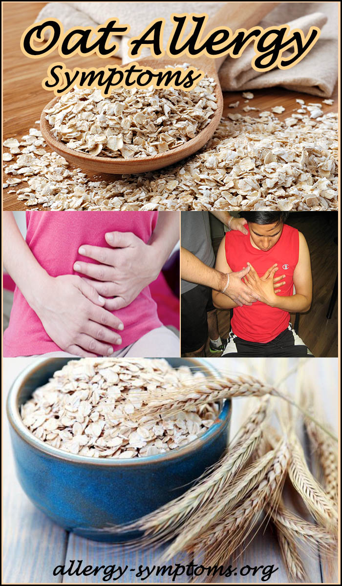 Oat Allergy Symptoms And Diagnosis