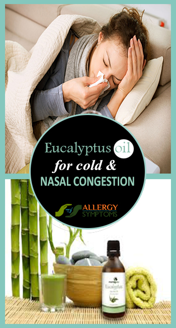 Eucalyptus Oil for Cold and Nasal Congestion