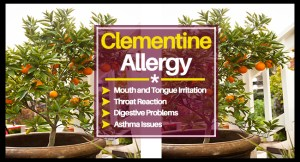 Clementine Allergy FB