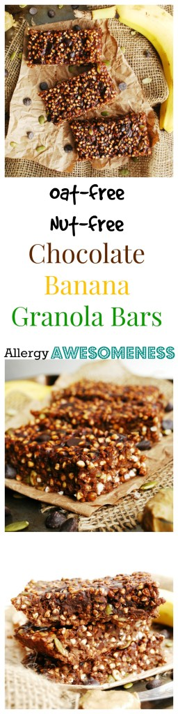 Oat free & Nut Free Chocolate Banana Granola Bars by AllergyAwesomeness