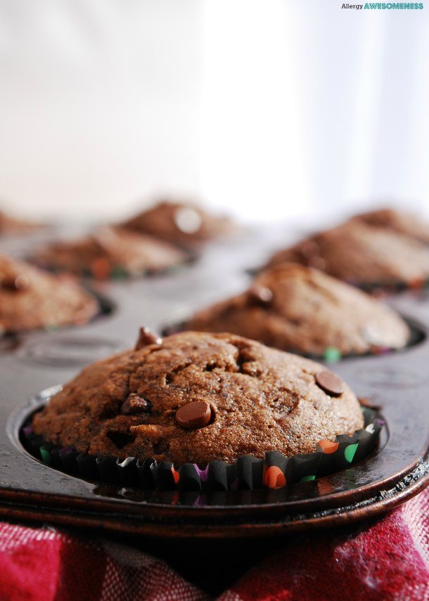 Chocolate Banana Muffins Recipe by AllergyAwesomeness