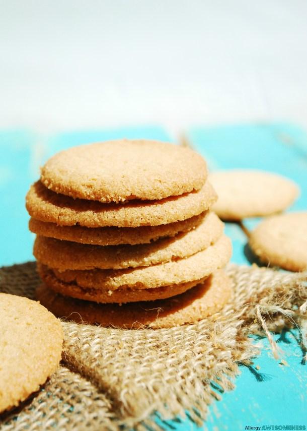 Enjoy Life Crunchy Cookies