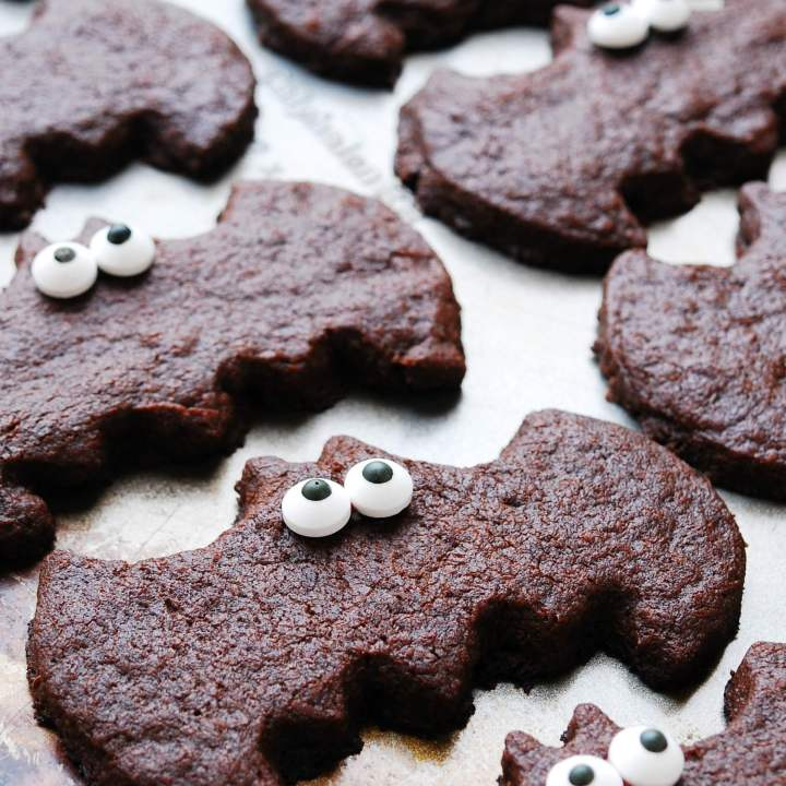 Chocolate Sugar Cookie Bats (Gluten, dairy, egg, soy, peanut & tree nut free; top-8-free; vegan)