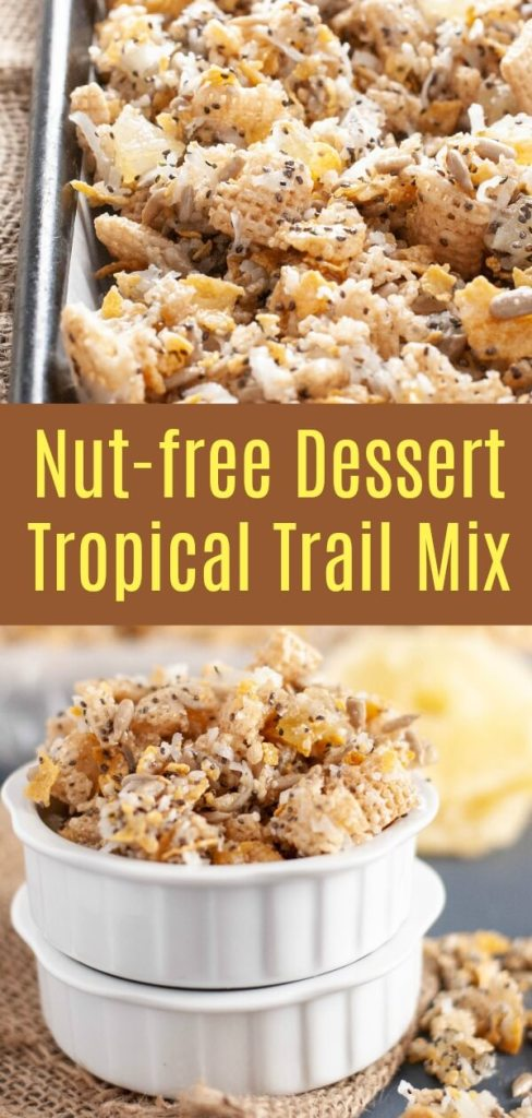 nut-free-dessert-tropical-trail-mix-recipe-by-allergyawesomeness