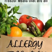 A Week's Worth of Allergy Friendly Freezer Meals!