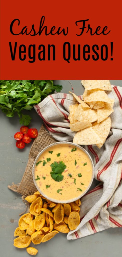 cashew-free-vegan-queso-recipe-by-allergy-awesomeness