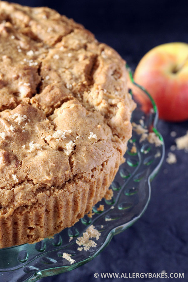 Apple cake that is dairy-free, gluten-free and nut-free.