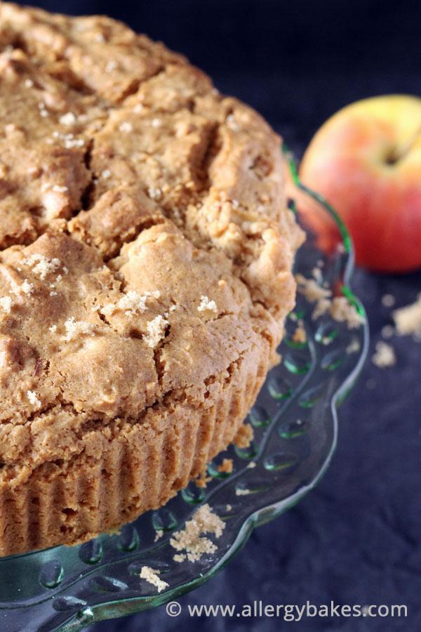 Gluten-free apple and cinnamon cake.