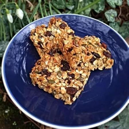 Dairy Free Nut Free Granola Bars